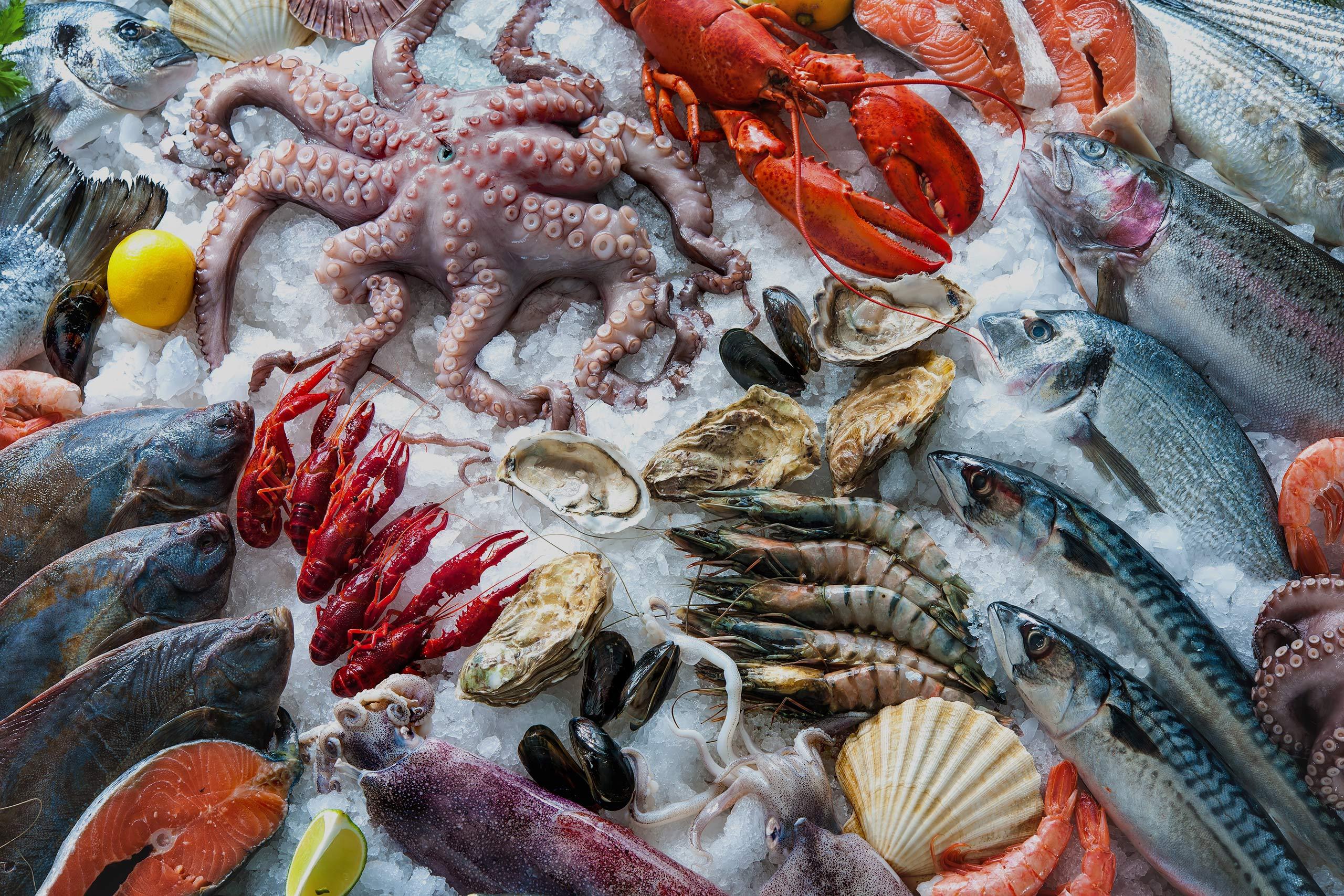 Seafood HACCP Sevilla SUSPENDIDO!